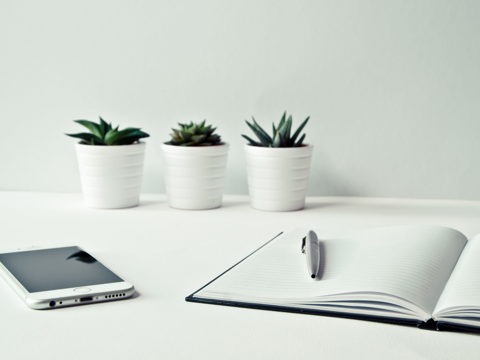 Notebook on desk with three cacti and pen and smartphone